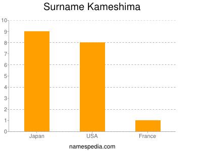 Surname Kameshima