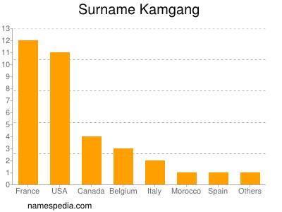 Surname Kamgang