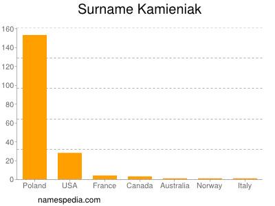 Familiennamen Kamieniak