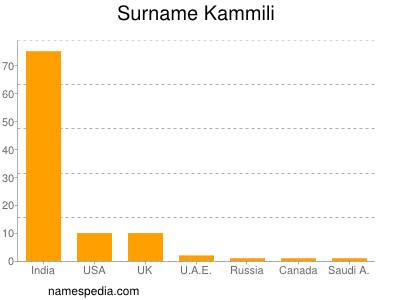 Surname Kammili