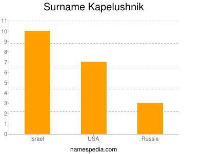 Surname Kapelushnik