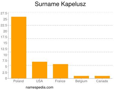 Surname Kapelusz