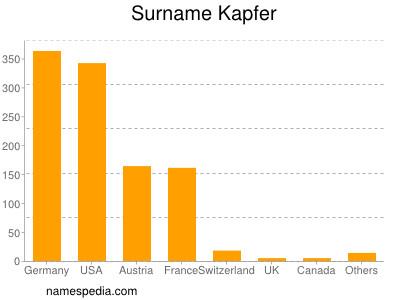 Surname Kapfer