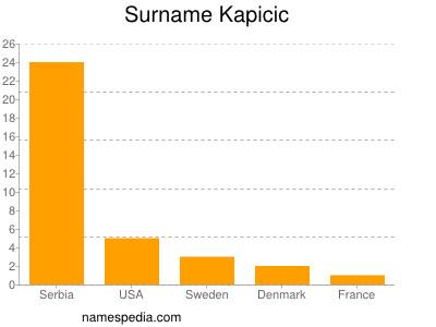 Surname Kapicic