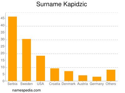 Surname Kapidzic