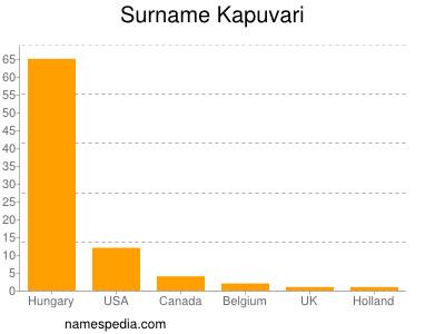 Surname Kapuvari