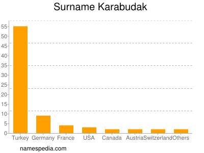 Surname Karabudak