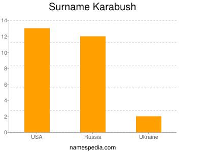 Surname Karabush