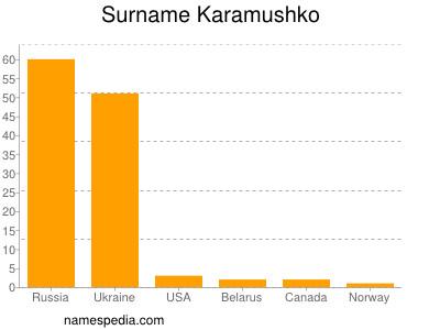 Surname Karamushko