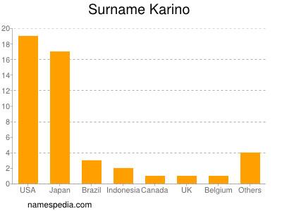Surname Karino