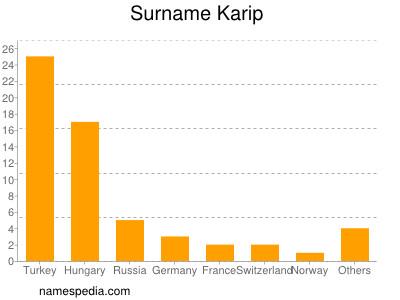 Surname Karip