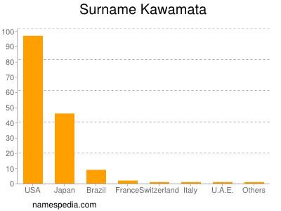 Surname Kawamata