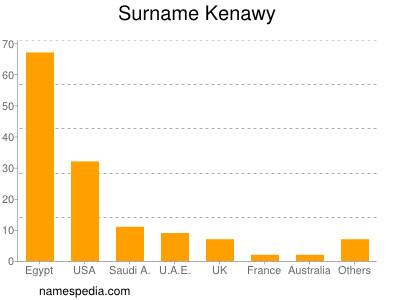 Surname Kenawy
