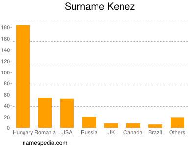 Surname Kenez