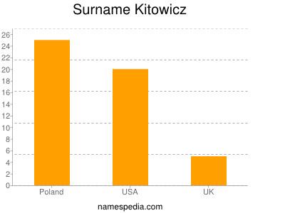 Surname Kitowicz