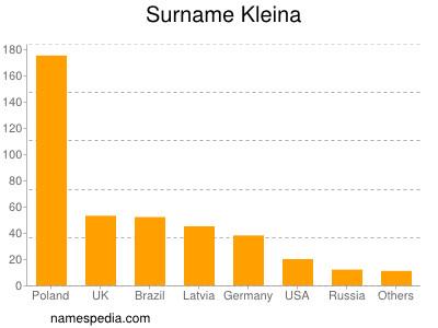 Surname Kleina