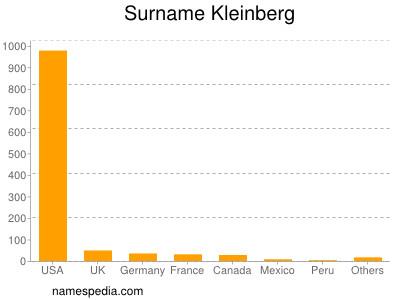 Surname Kleinberg
