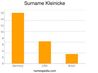 Surname Kleinicke
