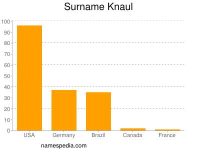 Surname Knaul