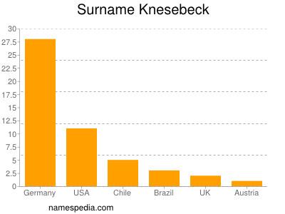 Surname Knesebeck