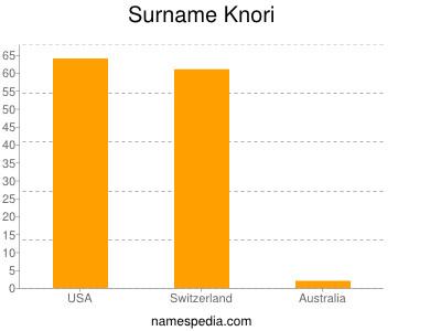 Surname Knori