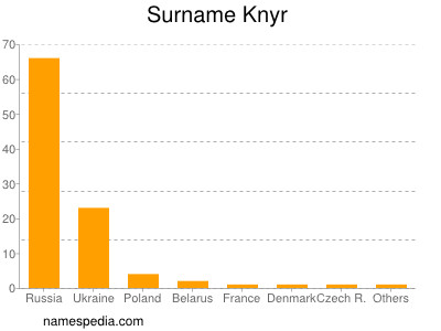 Surname Knyr