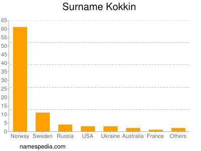 Surname Kokkin