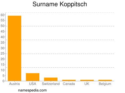 Surname Koppitsch