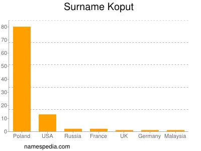 Surname Koput