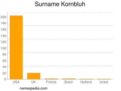 Surname Kornbluh