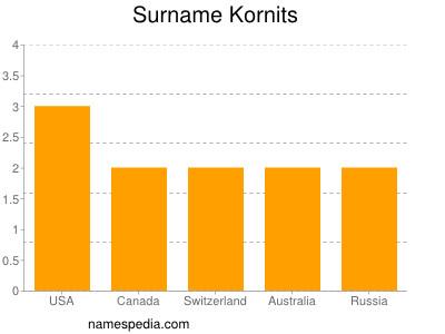 Surname Kornits