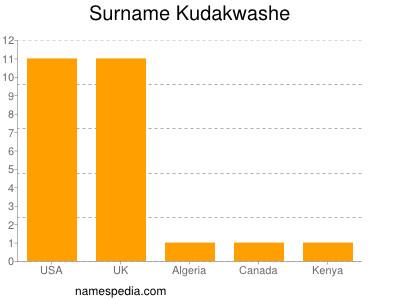 Surname Kudakwashe