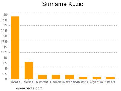 Surname Kuzic