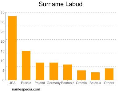 Surname Labud