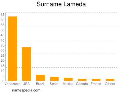 Surname Lameda