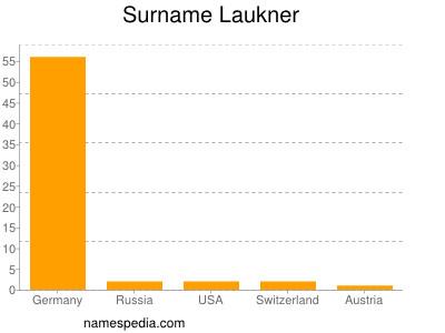 Surname Laukner