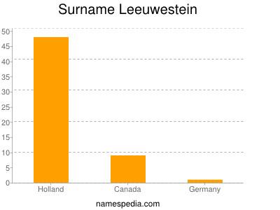 Surname Leeuwestein