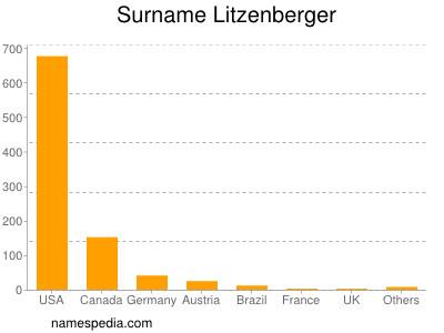 Surname Litzenberger