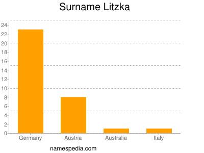 Familiennamen Litzka