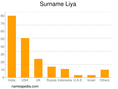 Familiennamen Liya