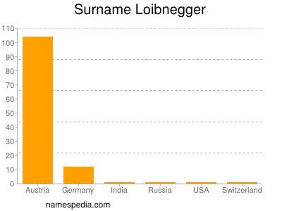 Surname Loibnegger