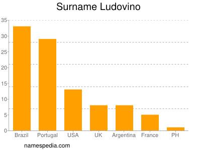 Surname Ludovino