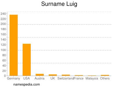 Surname Luig