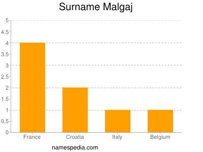 Surname Malgaj