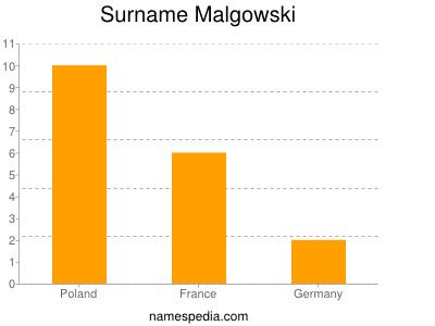 Surname Malgowski