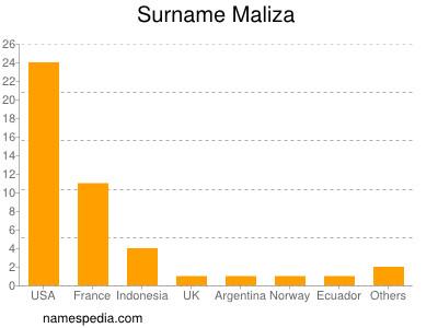 Surname Maliza