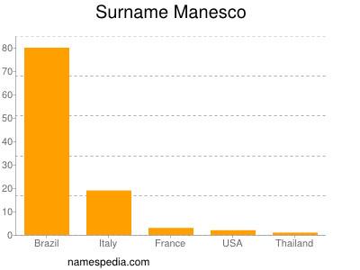 Surname Manesco