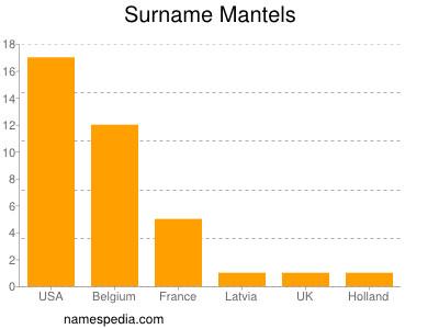 Surname Mantels