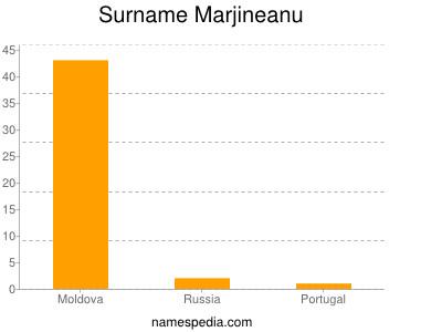 Surname Marjineanu