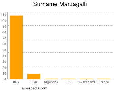 Surname Marzagalli